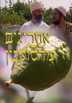 Watch Full Movie - אתרוגים מהסולטן - Subscribe & Download