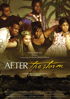 Watch Full Movie - After The Storm