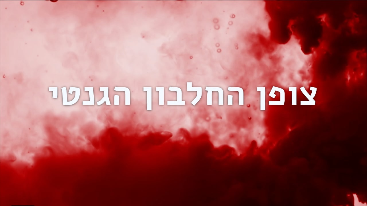 Watch Full Movie - צופן החלבון הגנטי