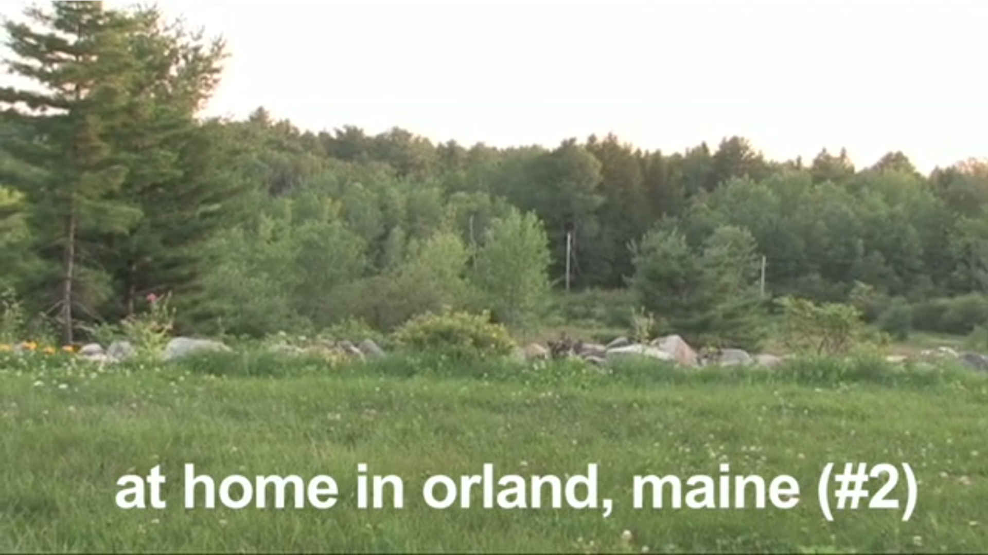 Watch Full Movie - At Home in Orland, Maine