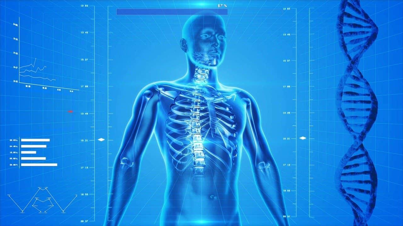 Watch Full Movie -  גוף האדם - התאים המופלאים פרק ראשון
