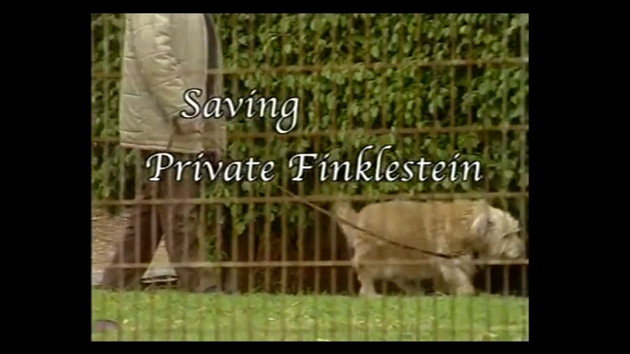 Watch Full Movie - Saving Private Finkelstein